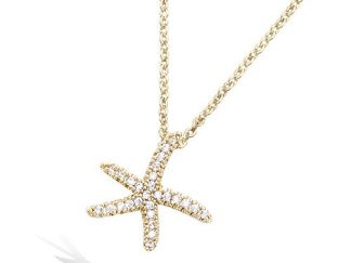 Collier or étoile mer oxydes